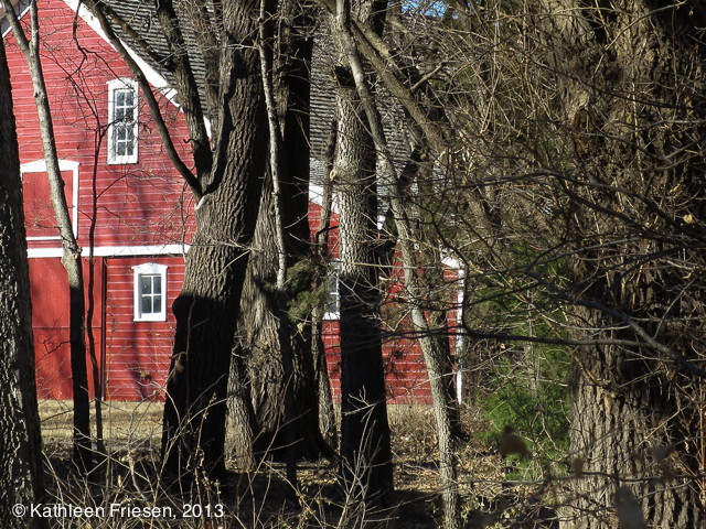 barn in the woods-0864