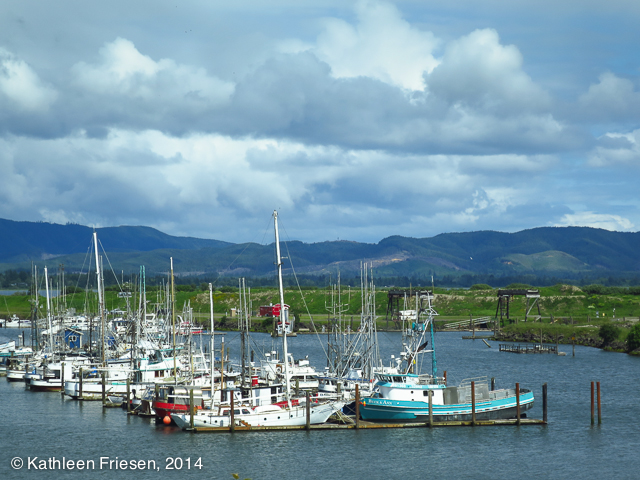 fishing fleet at Ilwaco