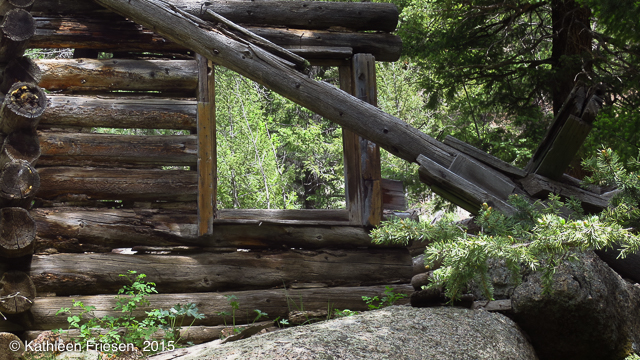 abandoned cabin on trout creek